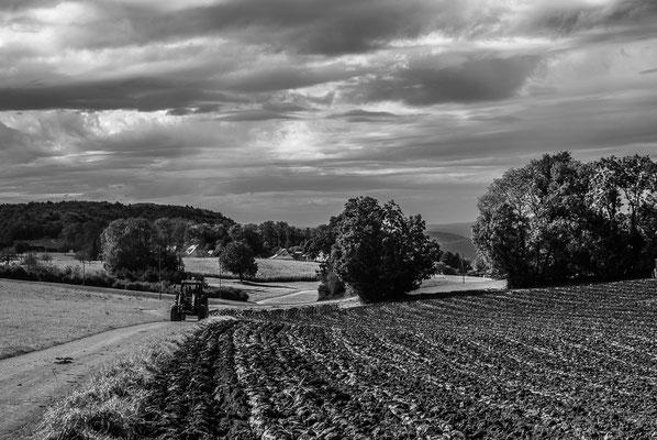 Herbstlandschaft 7 by Marcel Haag
