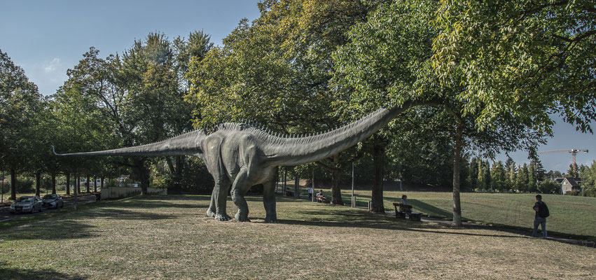 Dinosaur 3 by Marcel Haag