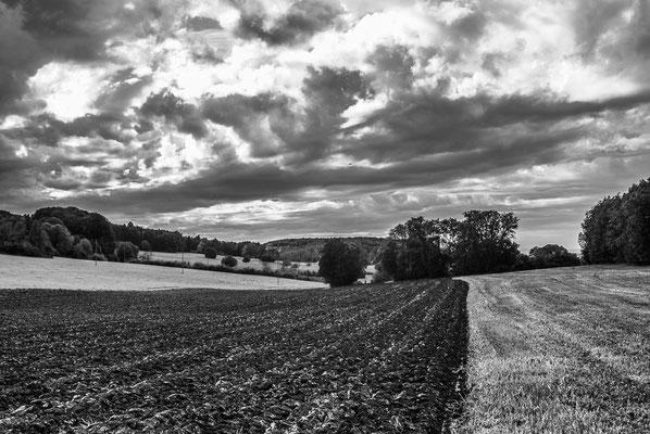 Herbstlandschaft 12 by Marcel Haag