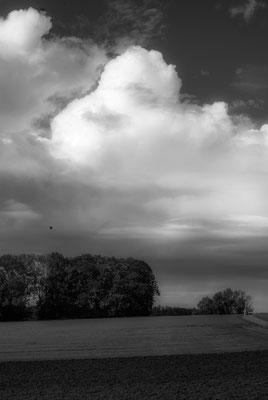Herbstlandschaft 2 by Marcel Haag