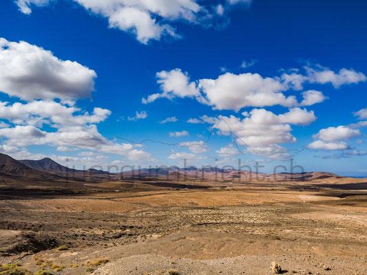 Landscape_009
