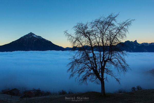 Morgenstimmung über dem Nebelmeer im Berner Oberland   -L36-