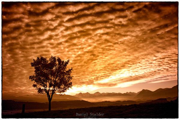 Sonnenaufgang über dem Gürbetal    -L13-
