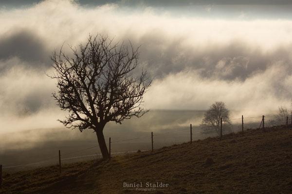 Herbstliche Stimmung in Guggisberg   -L34-