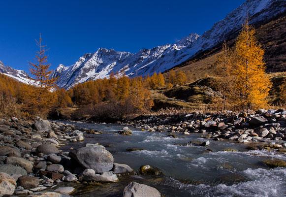 Goldener Herbst im Lötschental    -L24-