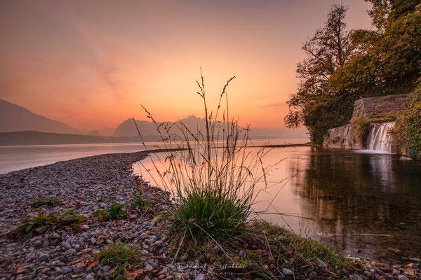 Sonnenuntergang am Thunersee -L48-