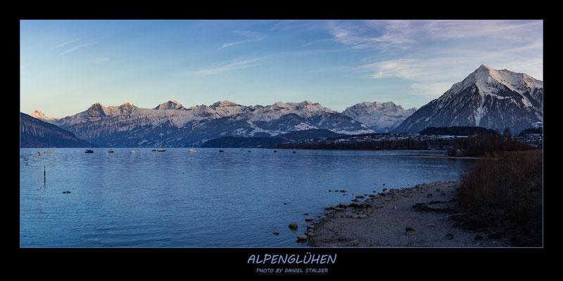 Panorama Alpenglühen am Thunersee