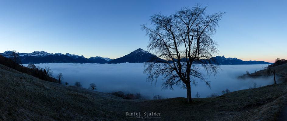 Panorama über dem Nebelmeer. Morgenstimmung mit Niesen und Stockhorn.
