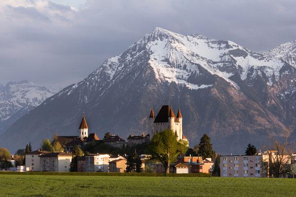 Schloss Thun, gerahmt vom Niesen    -L30-
