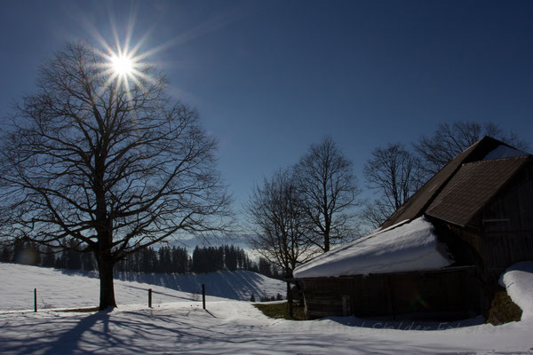 Winter im Diemtigtal    -L28-