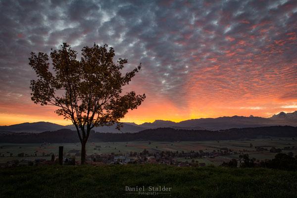 Sonnenaufgang über dem Gürbetal    -L18-