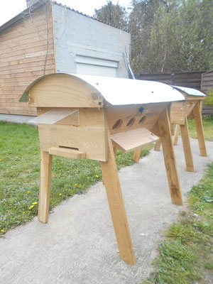 ruche à hublots de Remi (56)