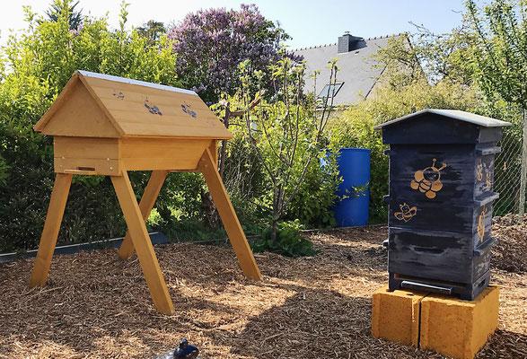 Les ruches horizontales de Philippe ( Côtes d'Armor )
