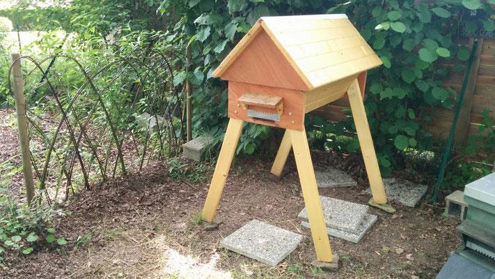 La ruche horizontale de Jéremy  (Rennes)