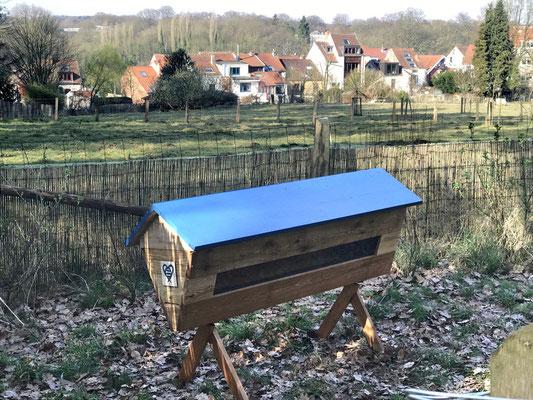 La ruche horizontale D'alexia (Bruxelles)