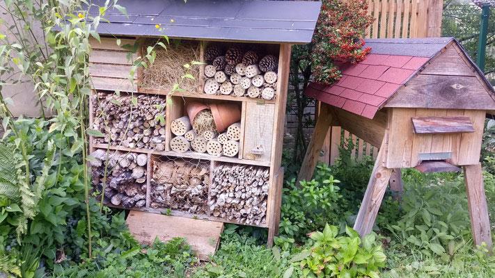 La ruche en palettes de Loïc