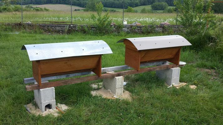 Les ruches horizontales TBH de Martial