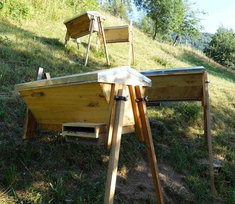 Les ruches de Florent ( Pyrénées) du rucher pentu