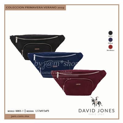 6003-1 David Jones Precio Publico $542.00