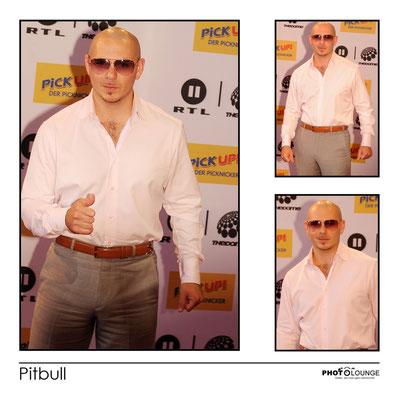 Pitbull  ©Fotograf Karsten Lauer   www.photolounge-lauer.de