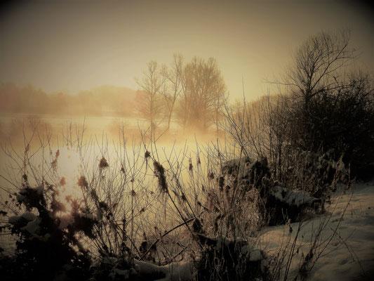 Foto: Tanja Nenninger