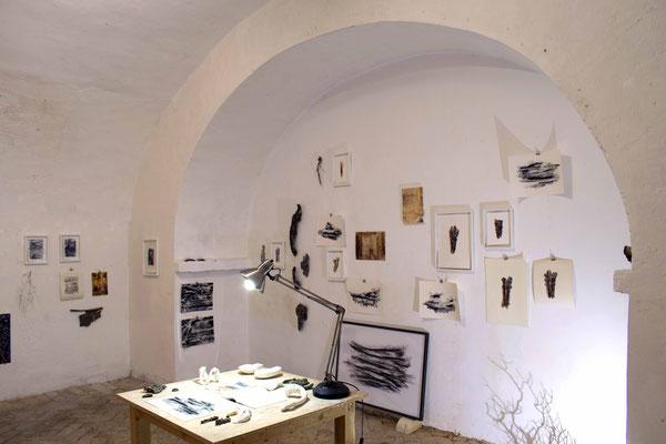 Lo Studio o Stanza dell'accumulo, dimensioni ambientali