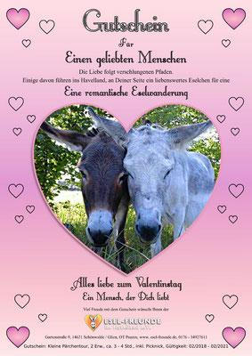 Gutschein - Rosa - Eselfreunde im Havelland e. V., Brandenburg - Eselwandern, Eselkurs