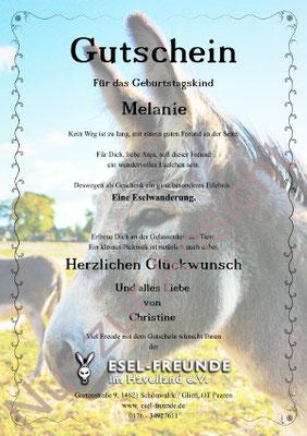 Gutschein - Standard - Eselfreunde im Havelland e. V., Brandenburg - Eselwandern, Eselkurs
