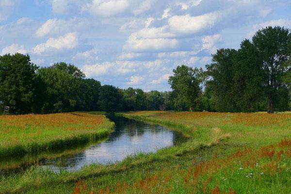 Eselfreunde im Havelland e. V. | Natur erleben