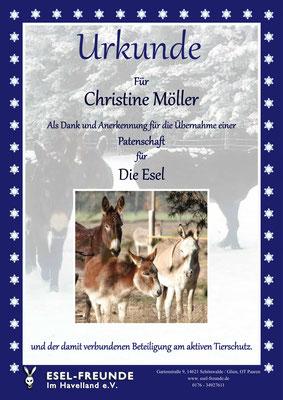 Patenschaftsurkunde - Weihnachtlich - Eselfreunde im Havelland e. V., Brandenburg - Eselwandern, Eselkurs