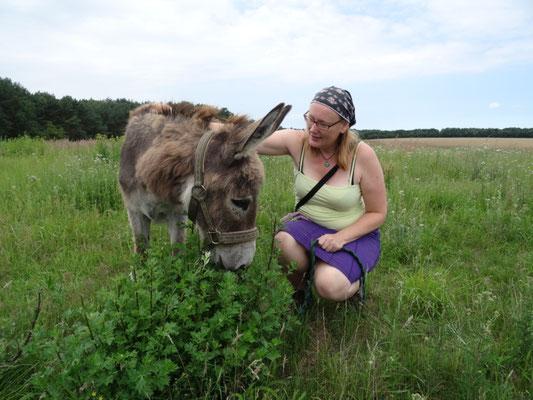 Eselfreunde im Havelland e. V. | Eselwanderungen