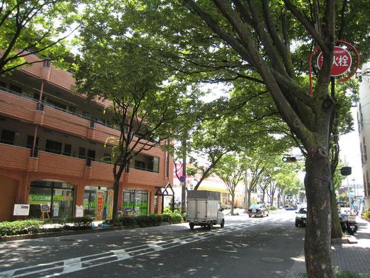 堺のけやき通り沿いのパソコン教室