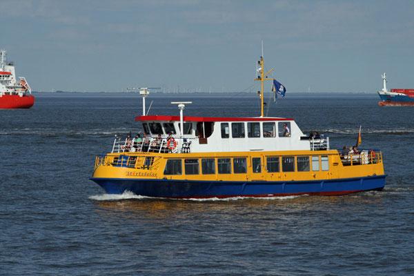 Hafenrundfahrten und Fahrten zu den Seehundsbänken