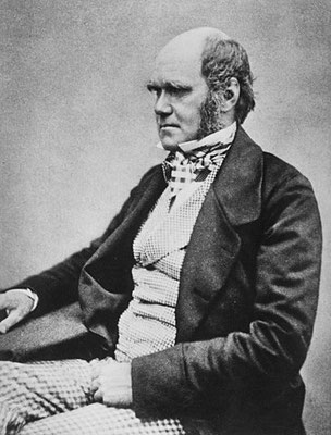 Charles Darwin and natural selection