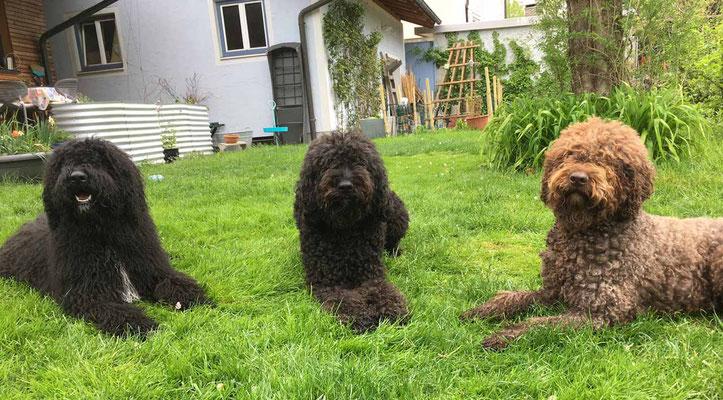 Vereint im Garten, Emilè mit Mama Héloise und Oma Glori