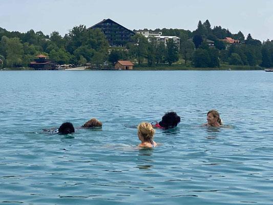 Gemeinsames schwimmen mit unseren Hunden im Faaker See, ein Traum 🐾  💞