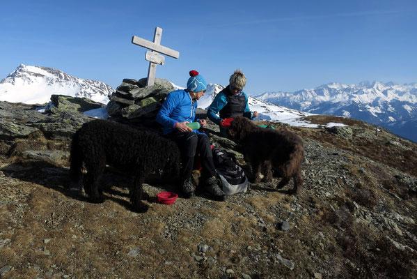 Gipfeljause auch für die felligen Bergsteiger