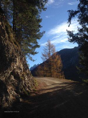 Der Fön hält sich noch bis Mittags, wunderschöne Herbstfarben  Im Hintergrund die ersten Kaiserspitzen