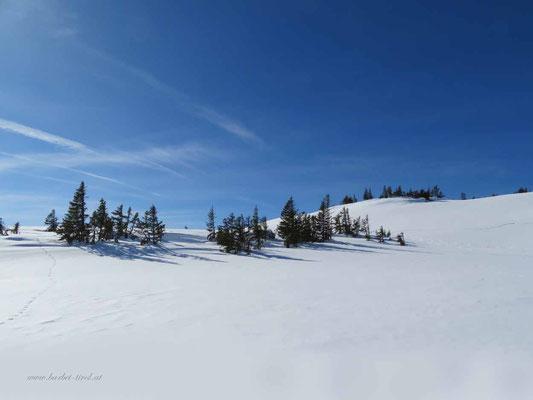 Traumhafte Winterlandschaft am Schellenbergkogel, ein Vorgipfel vom Schellenberg