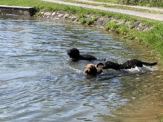 Wenn Mama und Tante schwimmen gehen, ja dann muss die kleine Cara es auch einmal ausprobieren