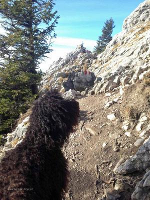 Hèloise schaut sich den Gipfelaufbau ersteinmal genau an