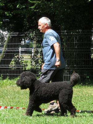 Héloise trifft ihren Vater Nuno. Hier präsentiert sich Nuno vom Zulimo im Ring.