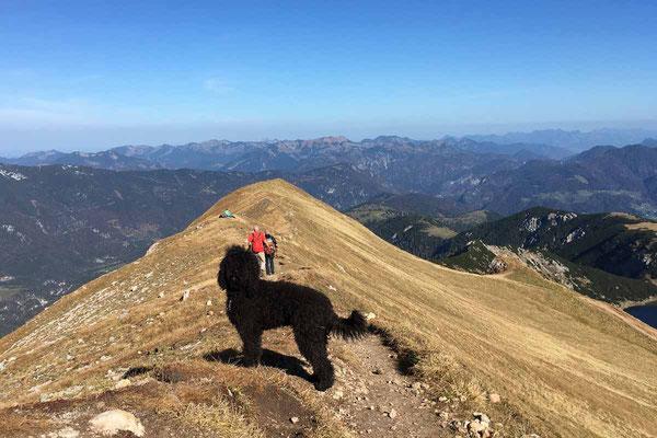 Gipfelblicke ohne Ende