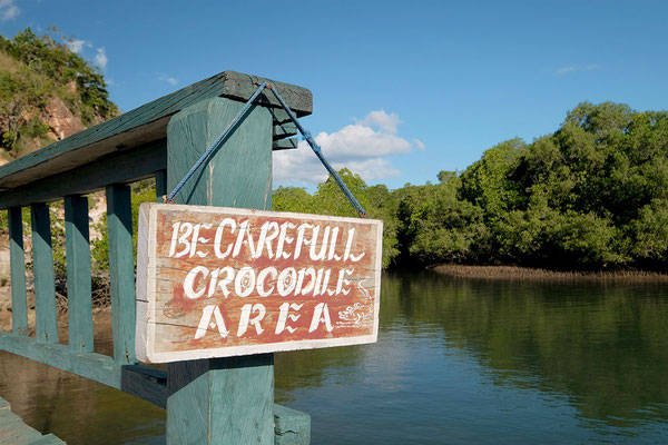 Crocodile Area Rinca