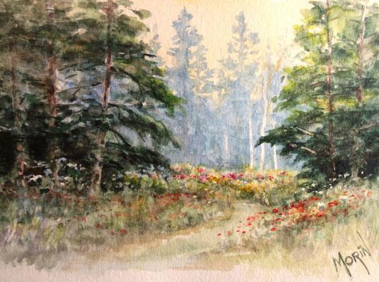 SENTIER VERS OG LA PRAIRIE - aquarelle - collection privée