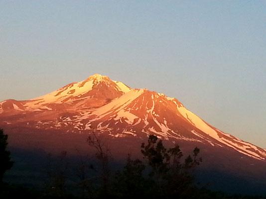Mount Shasta im Abendlicht