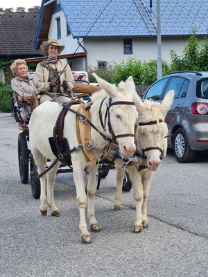 Kutschfahrt anlässlich Friedls 94sten Geburtstages im April 2020