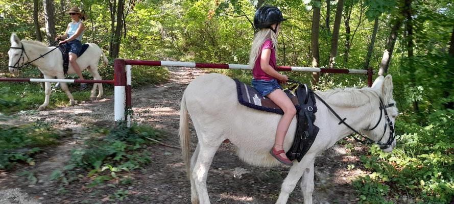 Eselreiten kann man jederzeit buchen!