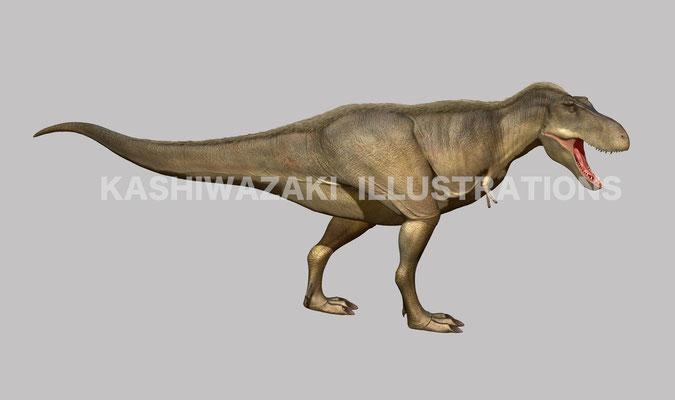 タルボサウルスの歩き