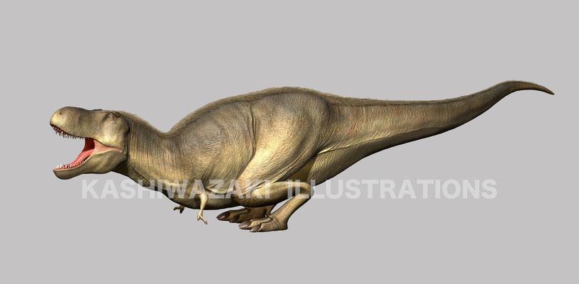 タルボサウルス起き上がり